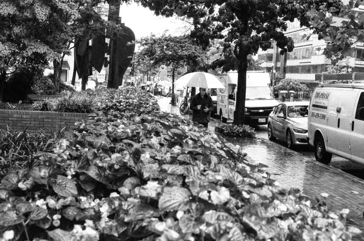 DC Rainy Day 2_Donald Groves_082917