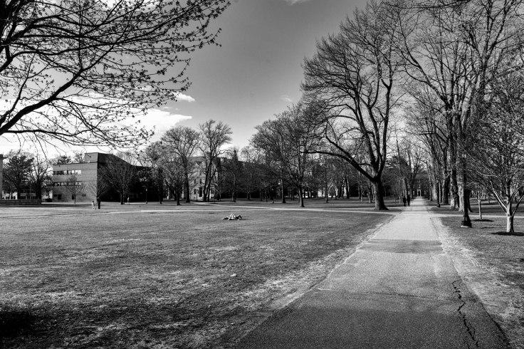 Bowdoin-College-2-bw_Donald-Groves_050520